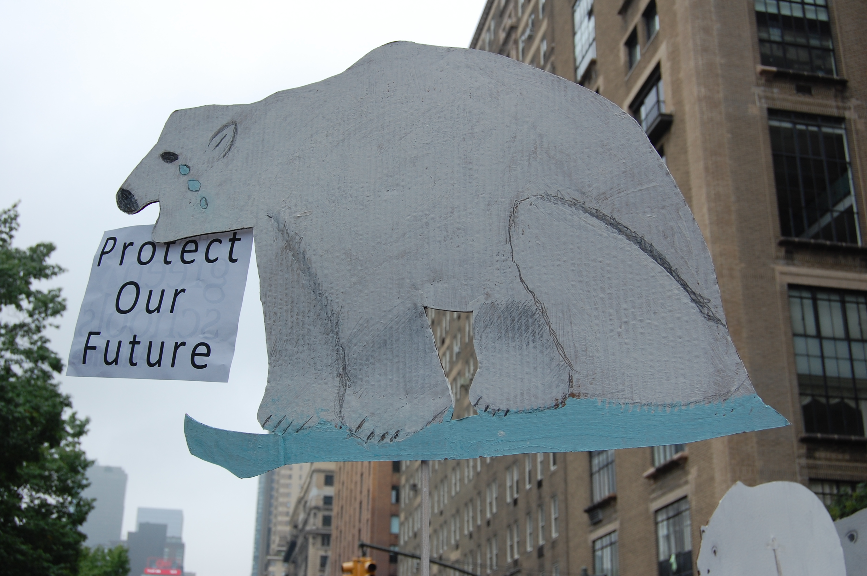 Polar Bear signs by the Grace Church School, NYC, 6th graders!
