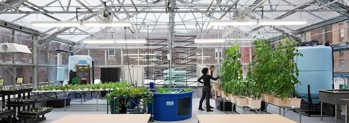 NYSunworks Hydroponic Greenhouse Science Lab