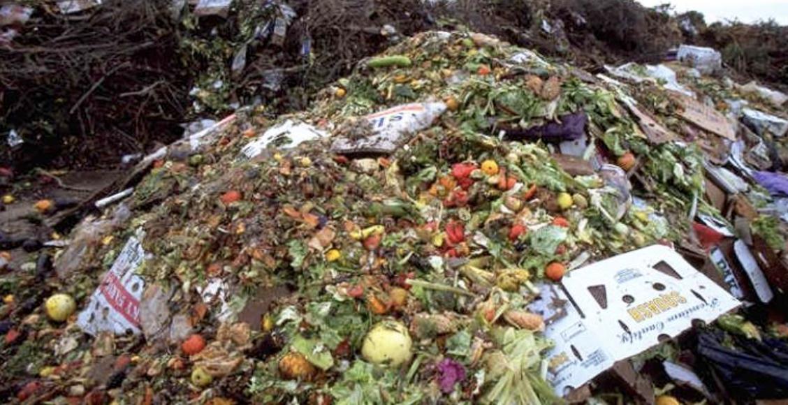 Food Waste2